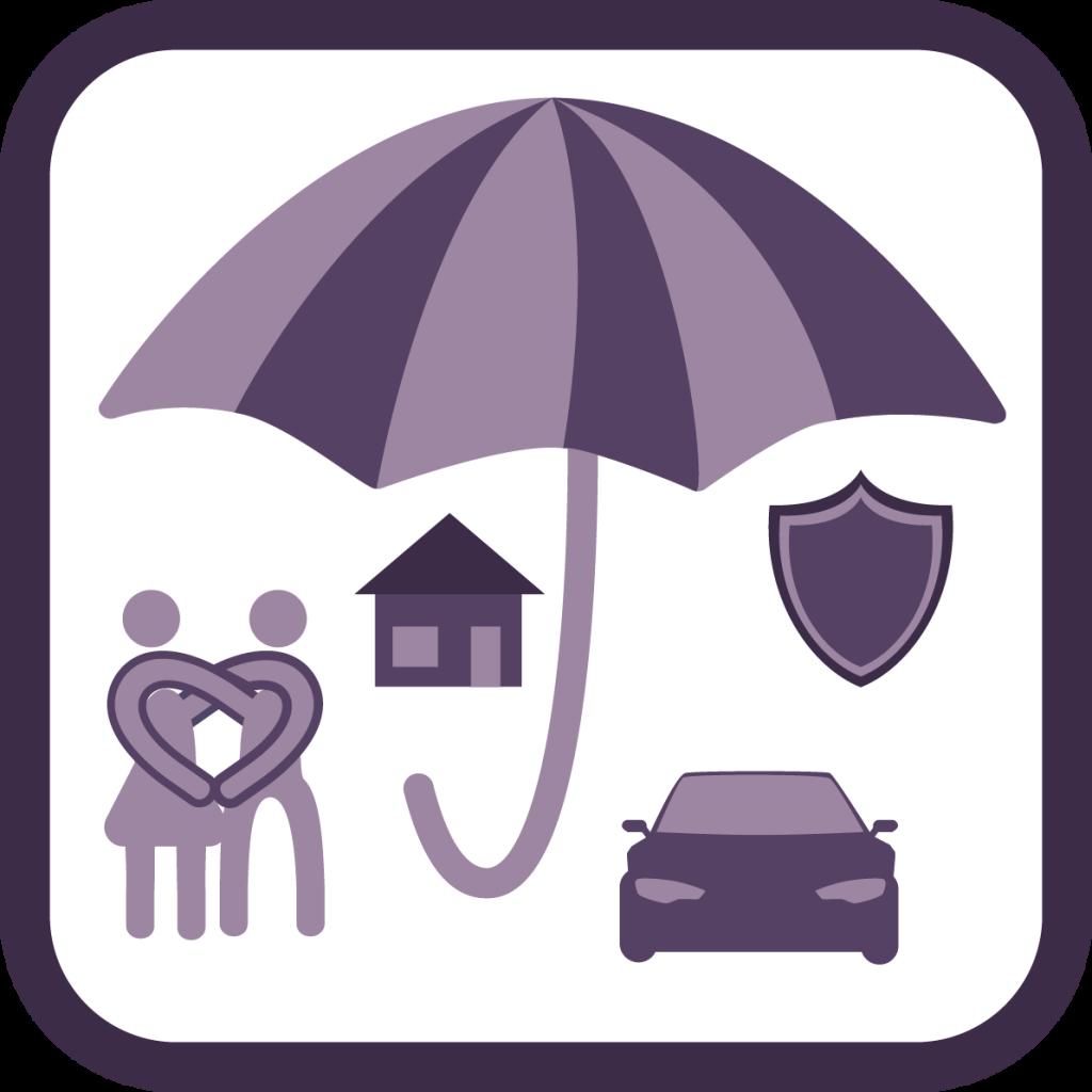 Концепция застраховане